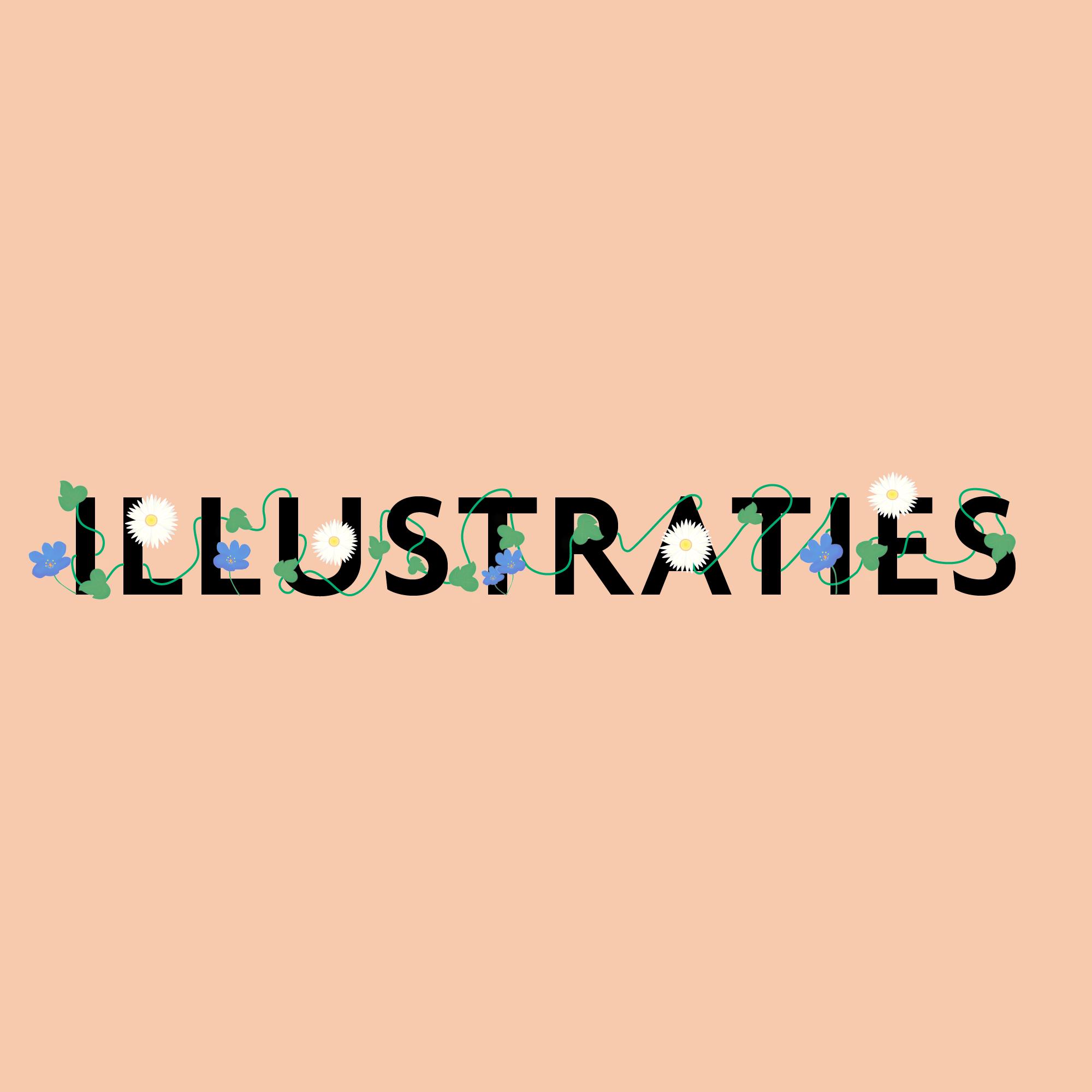 illustrator - grafisch ontwerper